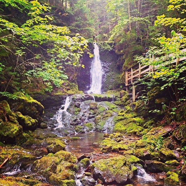 Fundy looks so beautiful!   Camping in nature's playground at Fundy National Park.  http://www.tourismnewbrunswick.ca/Products/F/Fundy-National-Park.aspx?utm_source=pinterest&utm_medium=owned&utm_content=2015%2Bpin%2Beng&utm_campaign=tnb%2Bsocial