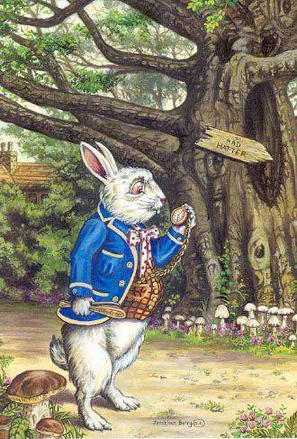 Jonathan Barry, The White Rabbitt