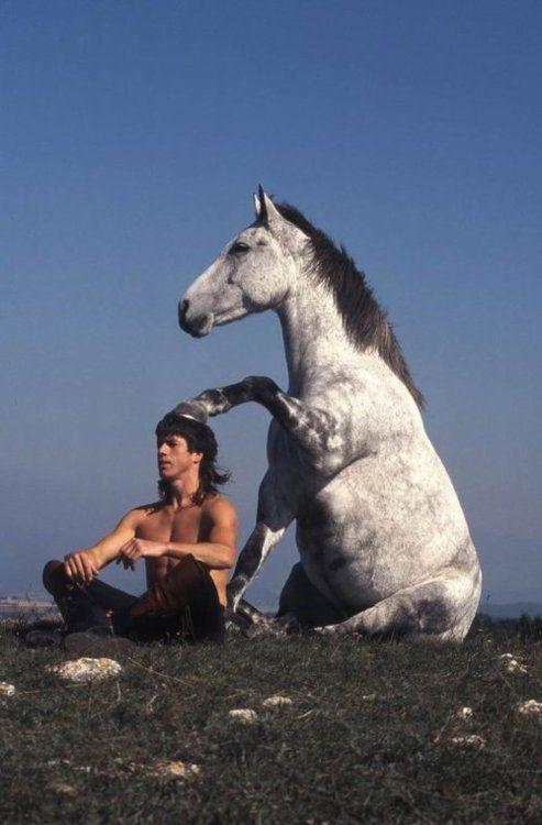 Harmonie harmony symbiose horse
