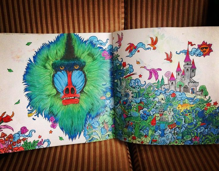Animorphia Colouring Colourful Baboon Complete Swisscolour