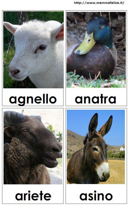 17 migliori idee su animali da fattoria su pinterest for Porte francesi della fattoria