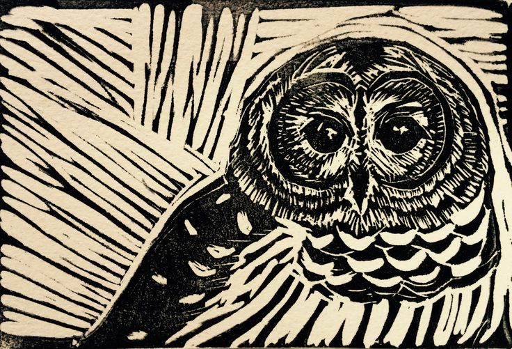 An earlier block print I made for my cousin. I like the texture the carving strokes leave in the background and the contrast between high and low detail cuts in the owl.