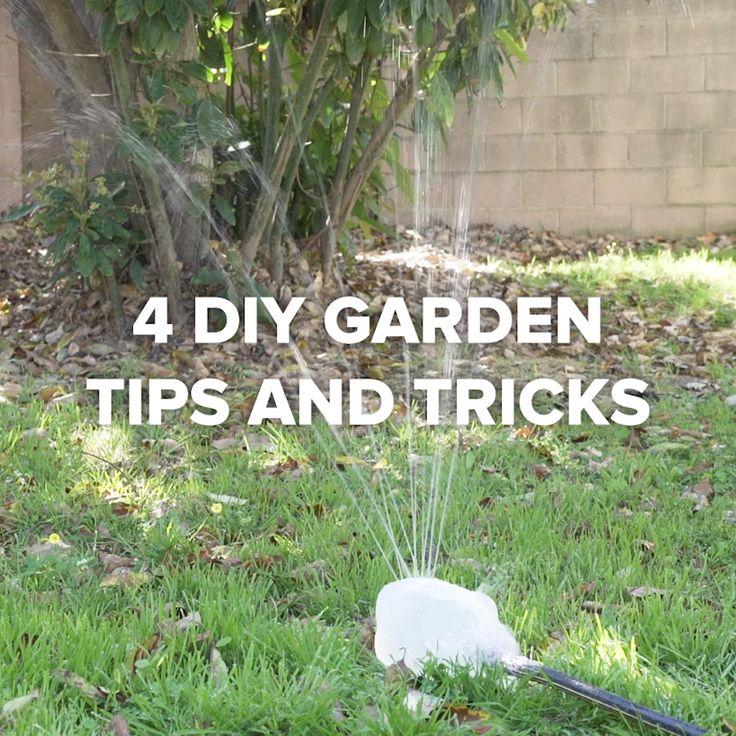 4 DIY Garden Tips And Tricks to repurpose plastic jugs