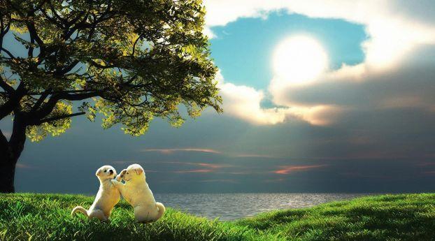 Best 3d Animal Wallpaper Hd Animated Animal Wallpaper Tiger