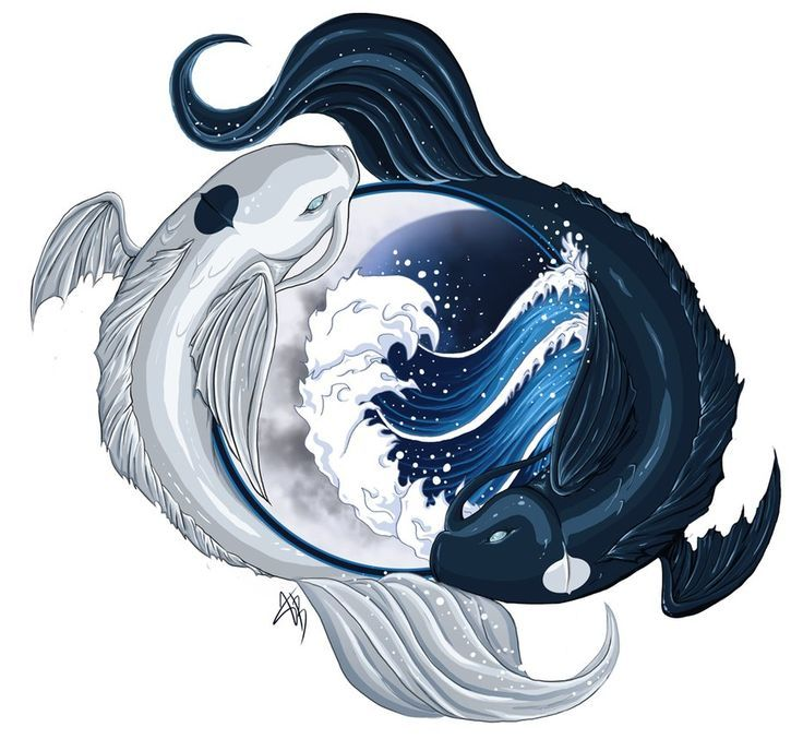 Avatar the last airbender yin and yang koi fish for Yin and yang koi fish