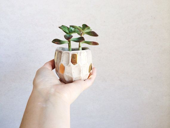 Gold Faceted Ceramic Planter - Succulent Planter - Gold Housewares - Gold Decor on Etsy, US$38,00