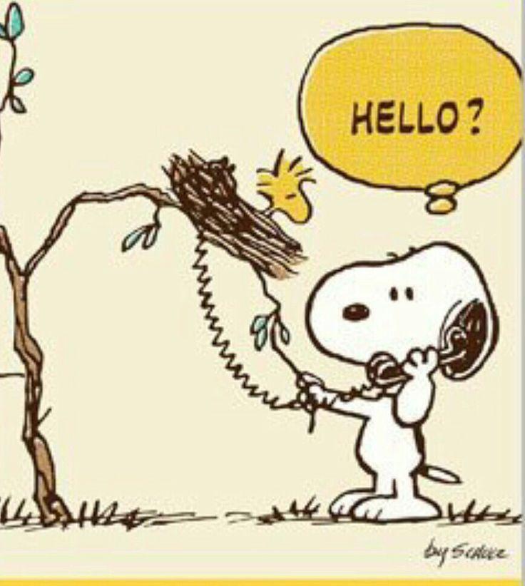 4212 besten i love snoopy bilder auf pinterest - Charlie brown zitate ...