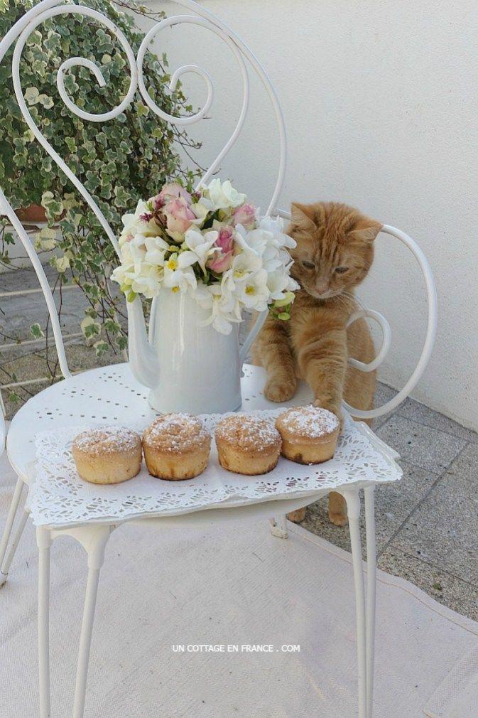 Les petits gâteaux de savoie et Lulu, blog campagne chic