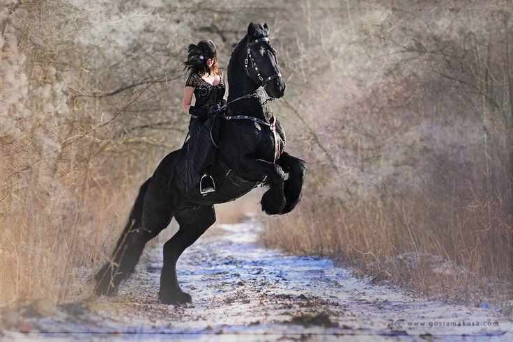 Gosia Makosa, equine photographer