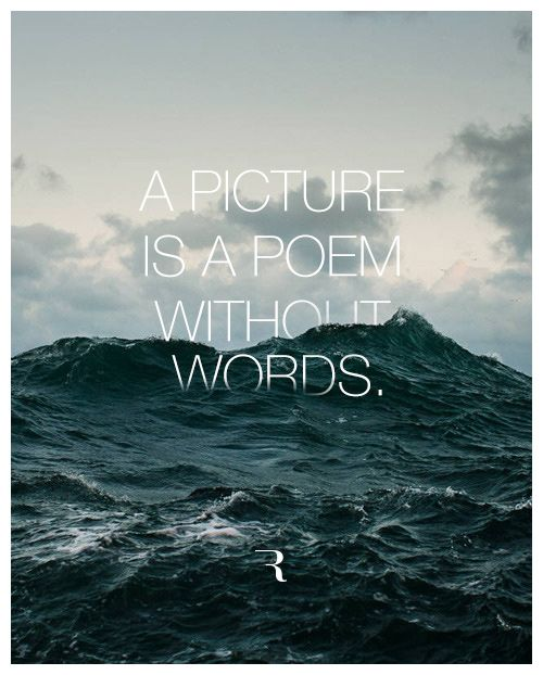 A PICTURE IS A POEM WITHOUT WORDS. #photography #quote