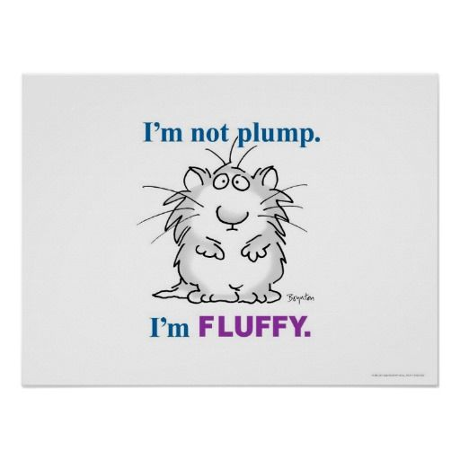 I'M NOT PLUMP, I'M FLUFFY poster by Sandra Boynton