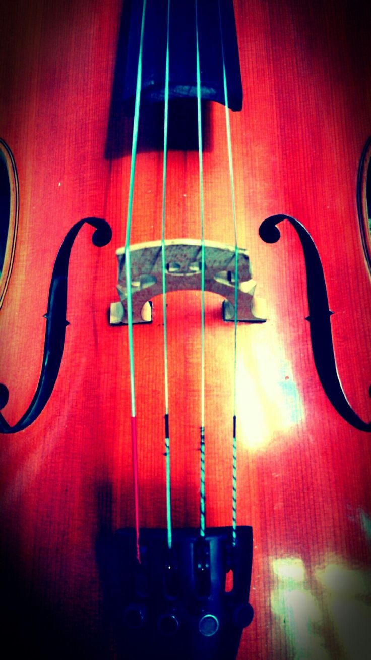 Le violoncelle, un instrument magnifique!