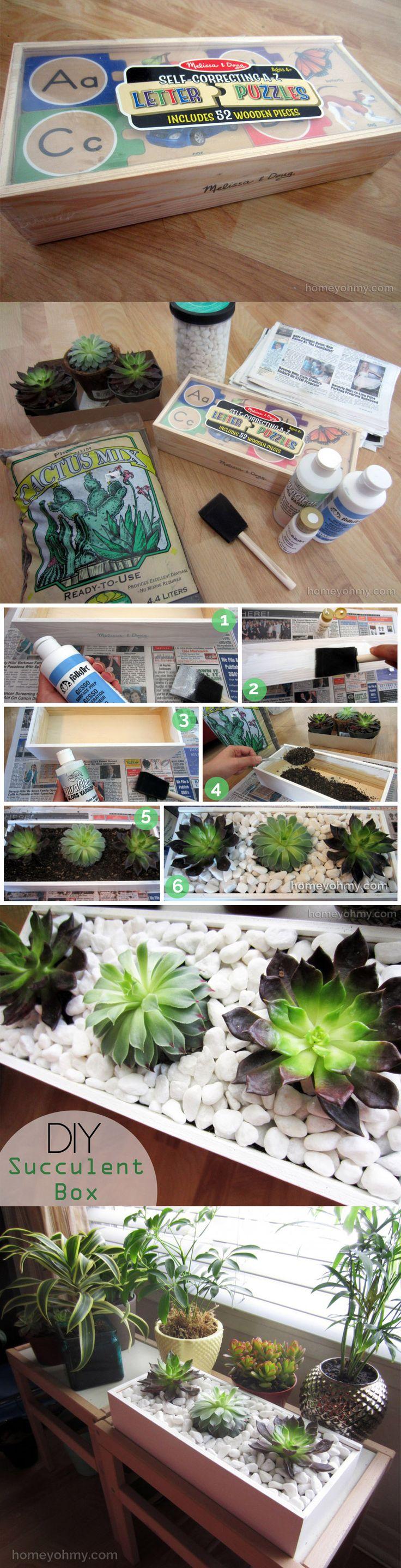 Plantas decorativas reciclando una caja de madera / http://www.homeyohmy.com/