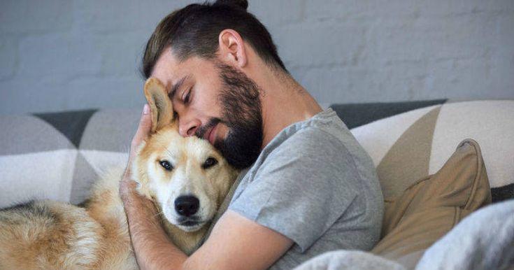 Los costos de preferir una mascota, en lugar de un hijo -- costos a 12 años tiempo de vida promedio de una mascota -- Tal como lo dicen los defensores de animales, una mascota no es un juguete, es un ser vivo que merece la atención y los cuidados necesarios. Por todo lo anterior, antes de tomar la decisión de comprar o adoptar una mascota tenga en cuenta que ella no solo pasa por el aspecto sentimental.................