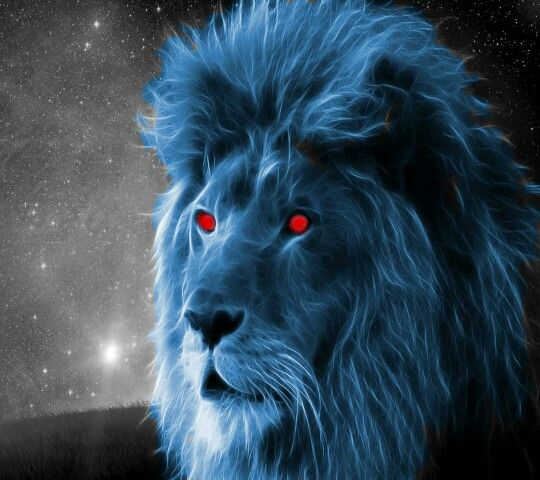 Blue lion wallpaper hd - photo#14