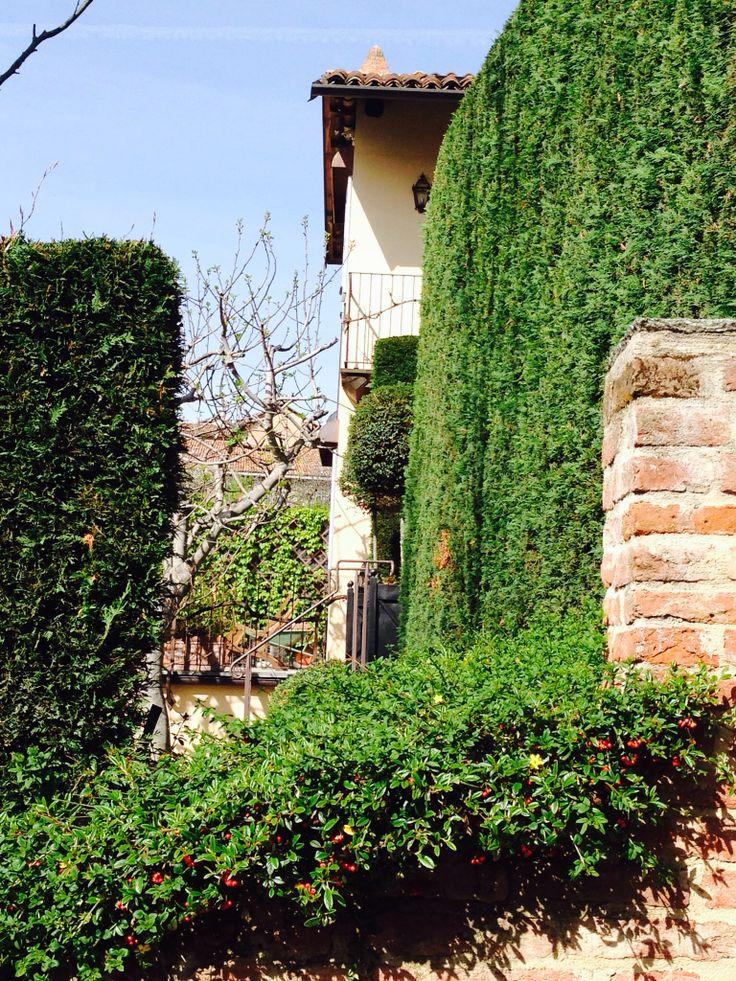 Secret garden:) La Morra