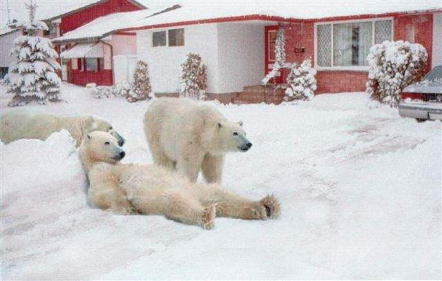 Saskatchewan Home Security!