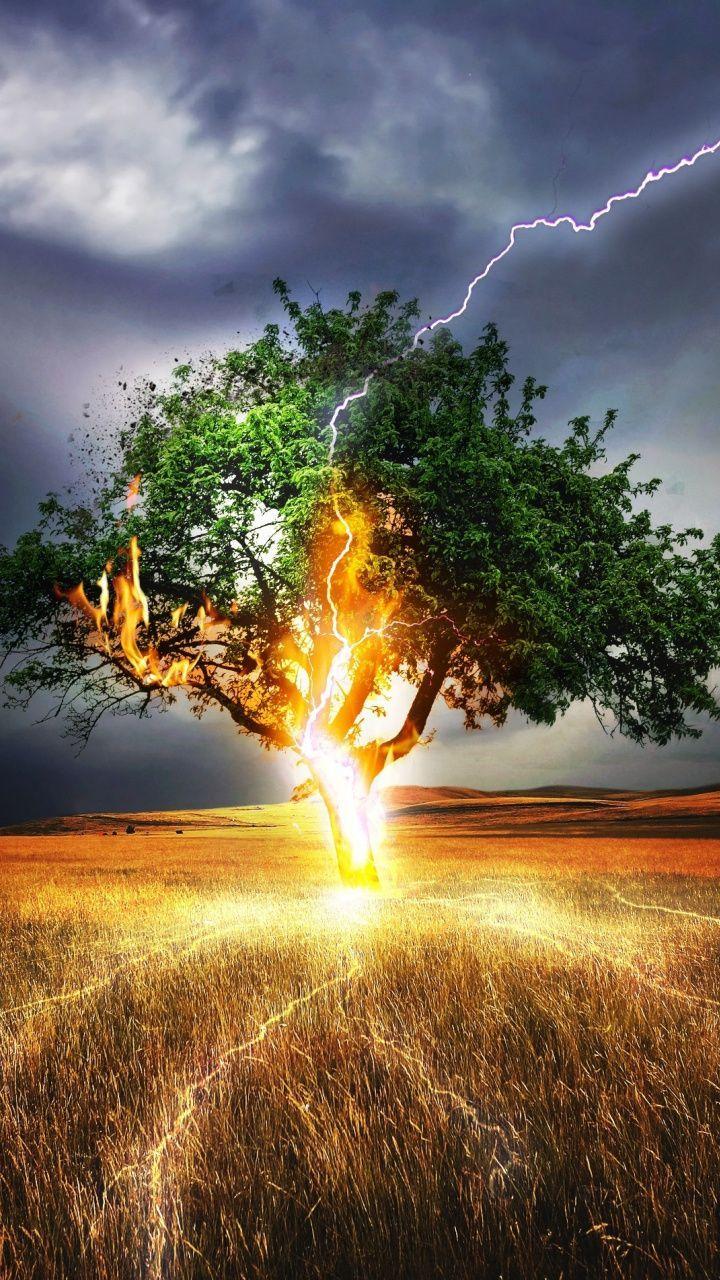 Lightning Flash Tree Landscape Storm 720x1280 Wallpaper In