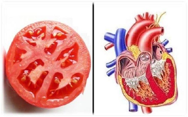 Észrevettétek, hogy néhány élelmiszer azok közül amelyeket fogyasztunkhasonlít egy – egy testrészünkre, szervünkre?Feltűnt már nektek, hogy a dió...