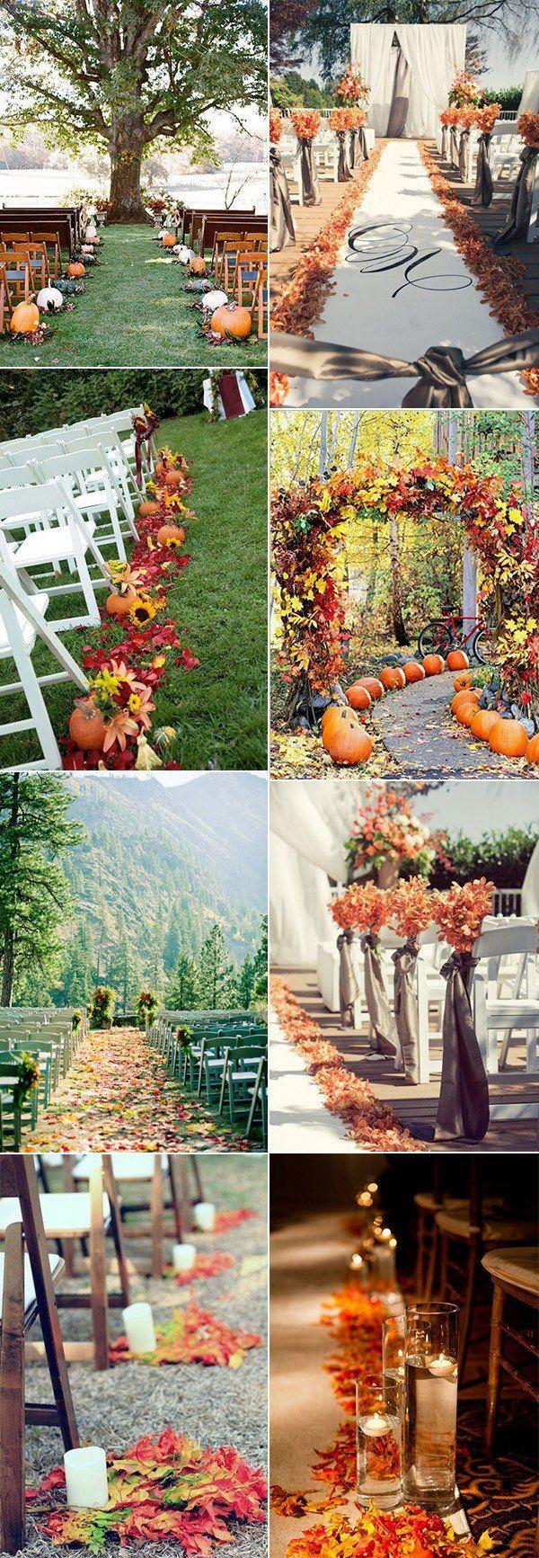 Best 25 Fall wedding mums ideas on Pinterest  Outdoor