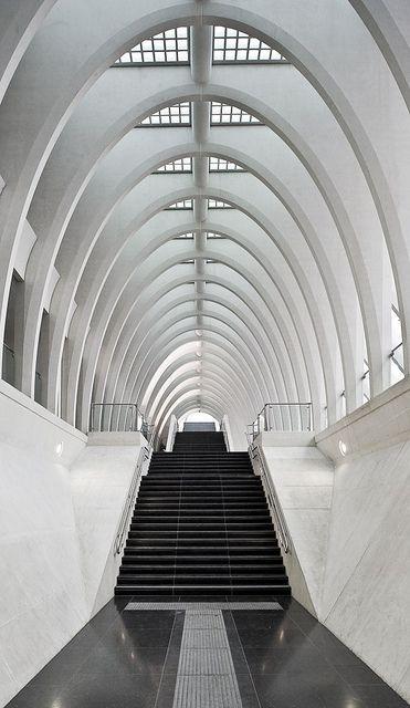 Santiago Calatrava Liège Guillemins TGV Station Liège, Belgium, photo by Michaël Jacobs