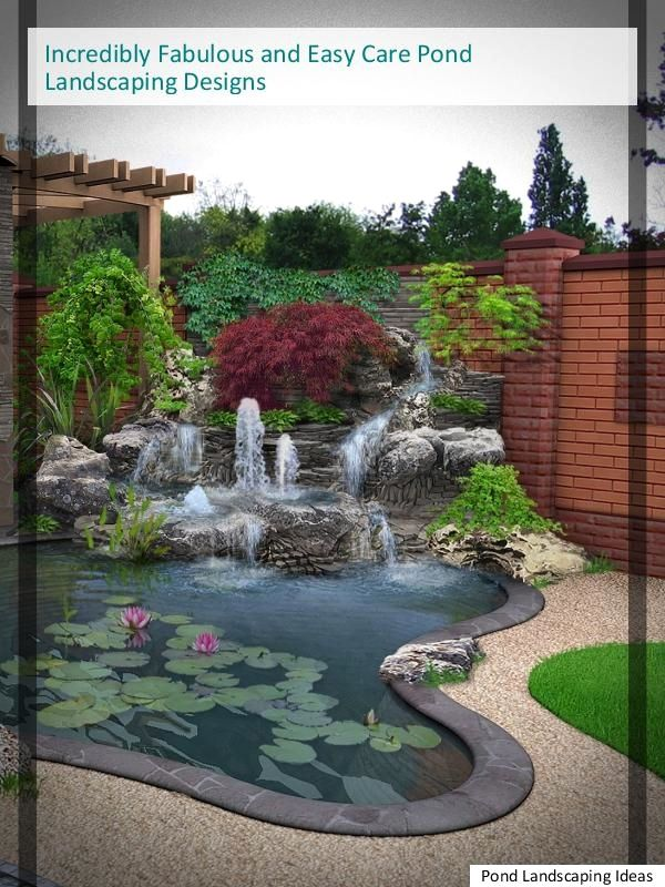 8 Wonderfully Amazing And Low Maintenance Pond Landscaping Tips