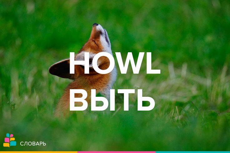 Howl |haʊl| — вой, вытье, завывание, рев, стон, выть, взвыть, реветь, завывать, подвывать  To let out a howl — испускать стон  The howl of a wolf — вой волка  A howl of laughter |ˈlæftər| — взрыв хохота  A howl of merriment |ˈmerimənt| — взрыв веселья  Примеры:  The wind was howling in the trees / Ветер завывал среди деревьев   There were howls of protest / Раздались протестующие вопли.   He makes his audience howl with laughter / Он заставляет зрителей покатиться со смеху.    #стон