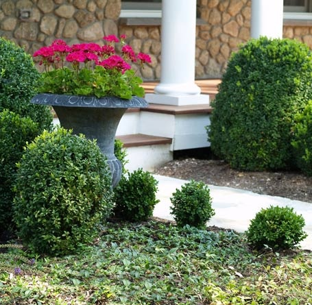 Foundation plantings garden ideas pinterest foundation for Foundation planting plans