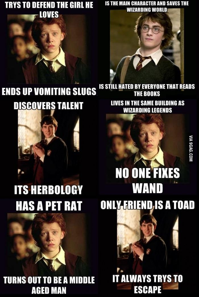 Just some Harry Potter memes... | Meme, Harry potter and ...