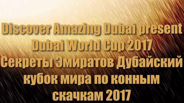 Dubai World Cup 2017 Дубайский международный кубок мира по конным скачка...