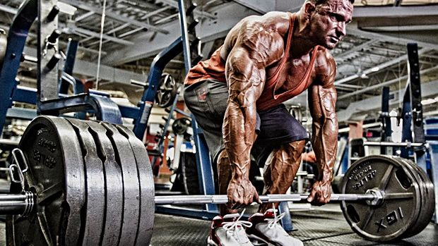 T Nation Workouts For Building Muscle