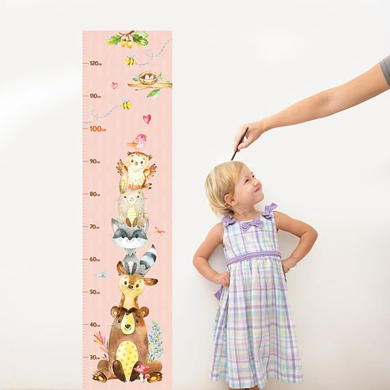Woodland Friends Wall Ruler Decal Sticker  Growth Chart Boy &