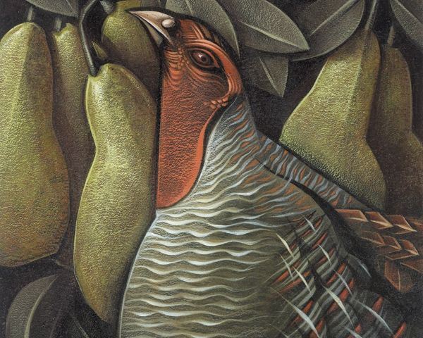 Птицы на открытках by Sara Tyson / 8 фото