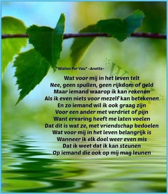 251 best images about wishes for you anette on for Wat is het leven