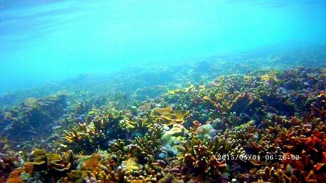 Colorful, Amed Beach (Bali - Indonesia).