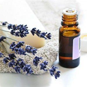 La lavanda e il suo olio essenziale vengono impiegati fin dall'antichità per il loro profumo e per le numerose azioni sia sul corpo che sulla psiche.  L'olio
