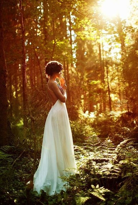 summer_woodland_20