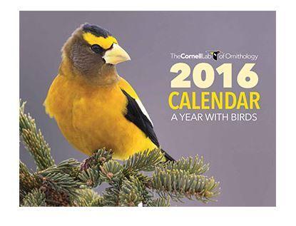 FREE 2016 Cornell Lab Calendar - http://www.guide2free.com/new-free-samples/free-2016-cornell-lab-calendar/