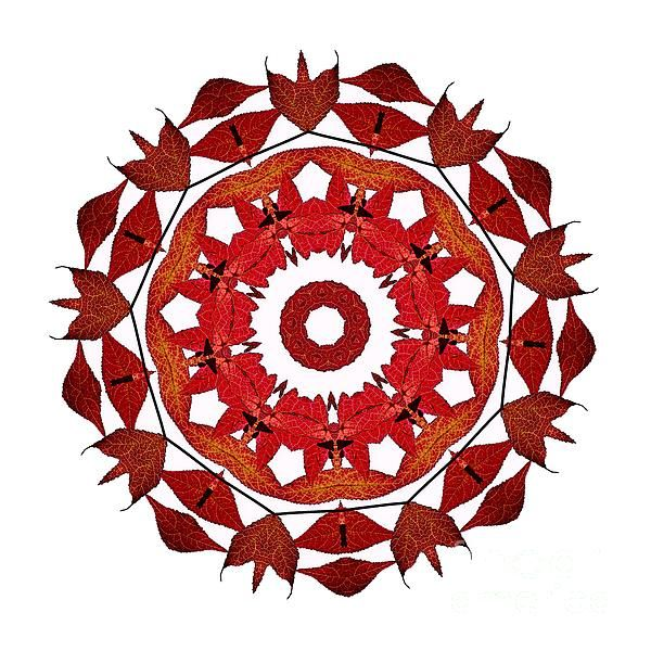 #AUTUMN #LEAVES #MANDALA by #Kaye #Menner #Photography Quality Prints Cards Products at: http://kaye-menner.artistwebsites.com/featured/autumn-leaves-mandala-by-kaye-menner-kaye-menner.html