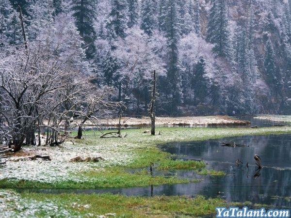 Апрельский лес http://yatalant.com/muzyka/muzykalnye-raboty/aprelskii-les.html