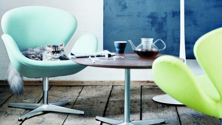 Друзья, порадуйтесь с нами😊 Мы прошли 3 этапа тендера на поставку 124 кресел Swan Chair от Arne Jacobsen и вошли в финальный пул поставщиков по данному тендеру😝 Запускаем в производство модель на утверждение всей партии👻 Сроки изготовления на данную модель всего 2 недели😊 Легендарное кресло Swan Chair от Arne Jacobsen (Эмиль Арне Якобсен) в наличии😍 от Arne Jacobsen (Эмиль Арне Якобсен) и вошли в финальный пул поставщиков по данному тендеру😝 Запускаем в производство модель на…