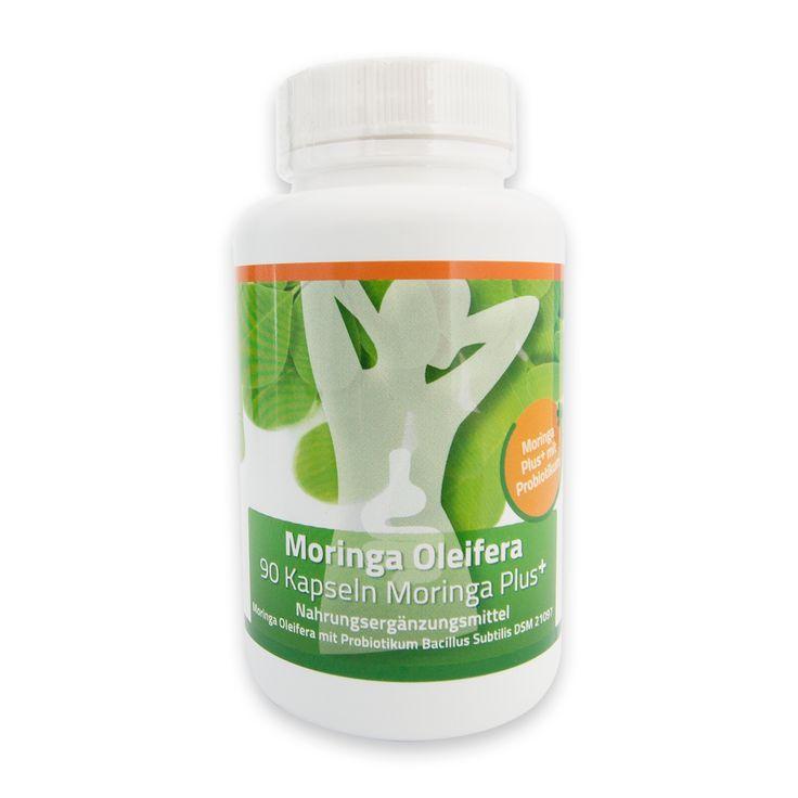 90 MORINGA-PLUS / MORINGA BLATTPULVER-KAPSELN je 420mg inkl. Bacillus subtilis DSM 21097 (Gesamtkeimzahl, aerob, mesophil 1,9 · 10 10 KBE / g)  vegetarische Kapseln, keine Zusatzstoffe, davon 95mg Kapselhülle Die praktischen,...