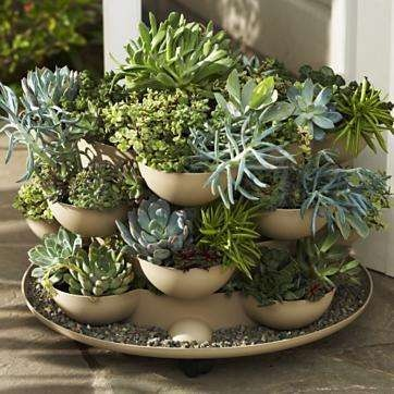 stacked succulentsGardens Ideas, Green Thumb, Cactus Plants, Salts Lakes Cities, Cacti, Porches Gardens, Gardens Planters, Indoor Pots,  Flowerpot