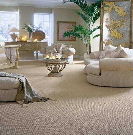 1000+ images about Carpet on Pinterest | Shaw carpet, Eclectic living ...