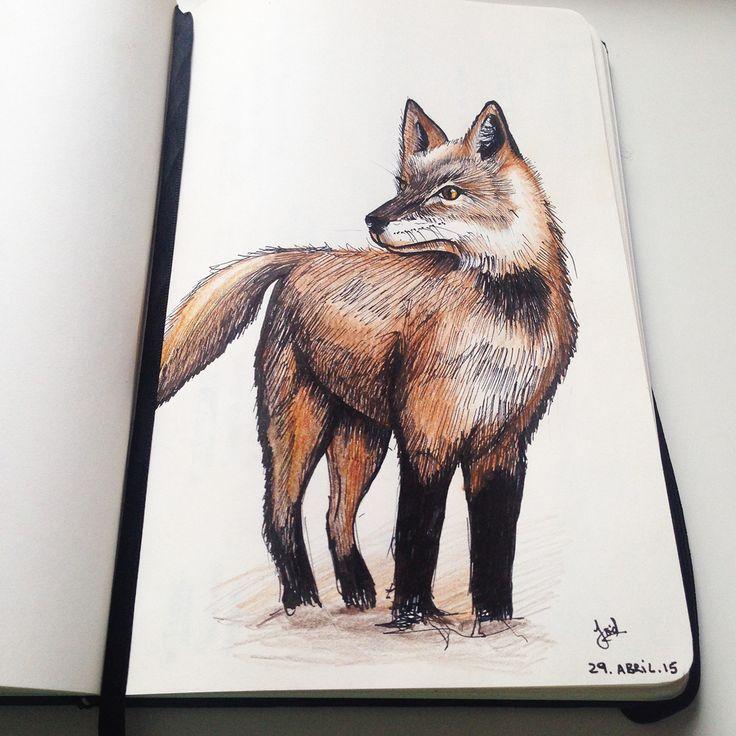 Animals sketch on Behance