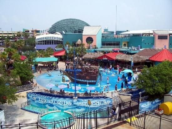 25 Best Ideas About Tampa Water Park On Pinterest Water