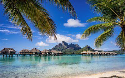 Scarica sfondi oceano, soggiorno, bungalow, isola tropicale, isole