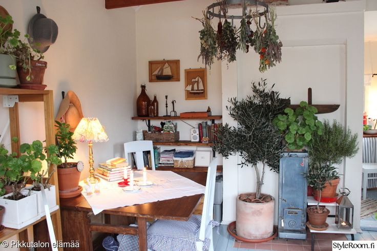 mökki,ruukkukasvit,koriste-esineet,viherkasvit sisustuksessa,vanhanaikainen