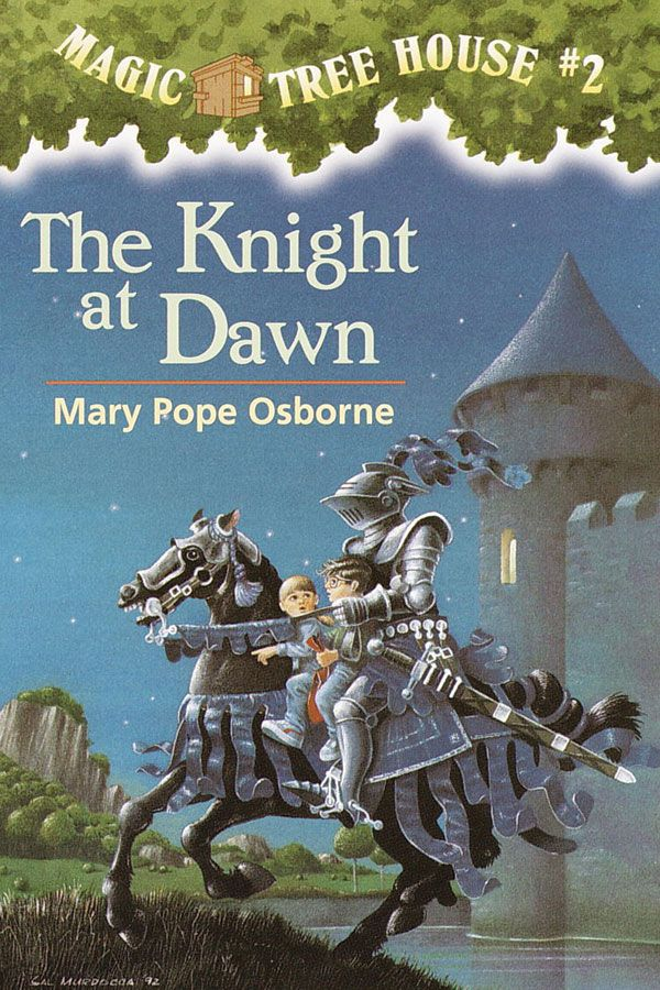 99 best co-op class ideas - magic tree house images on pinterest