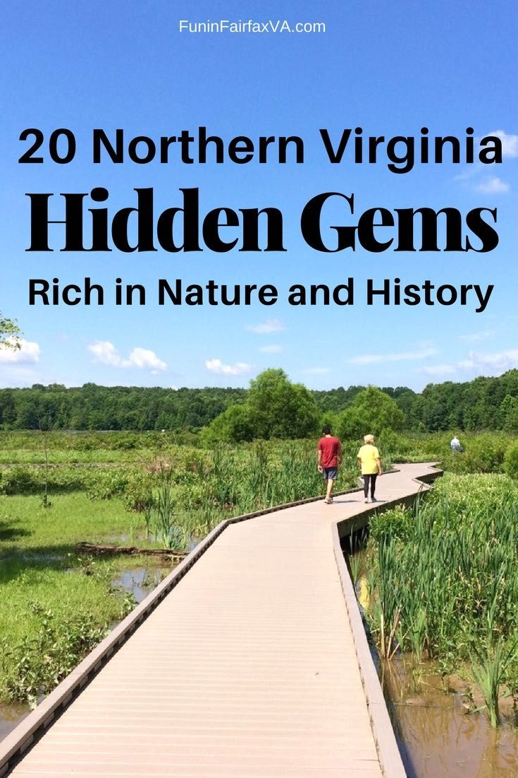 These Northern Virginia hidden gems offer beautiful nature and fascinating history, at must see destinations perfect for a locals outing or DC day trip.